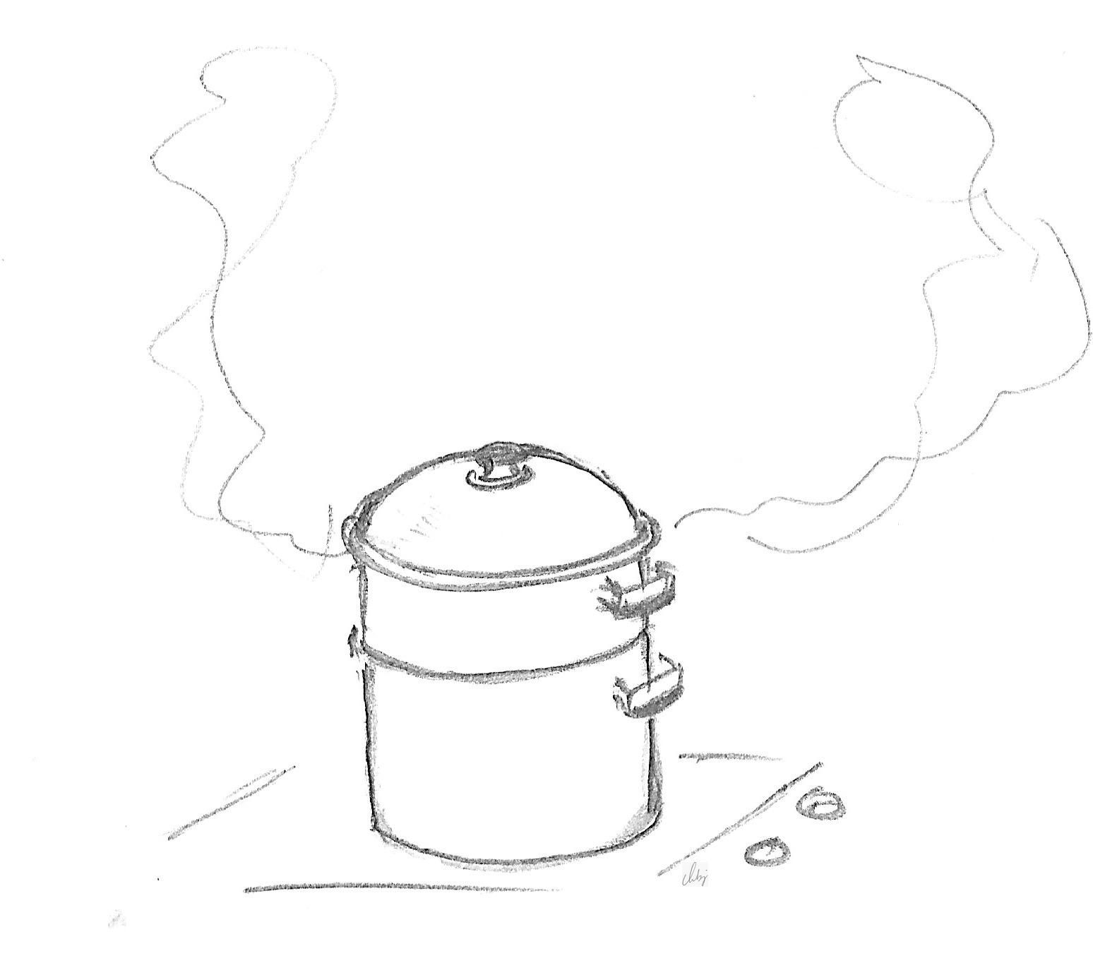 Cuitvapeur Vitaliseur Cuisson vapeur douce