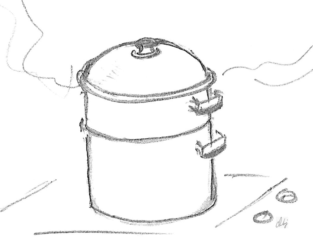 Vitaliseur cuisson vapeur